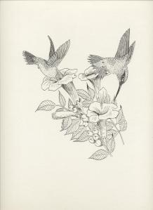 JM- Hummingbirds-bw
